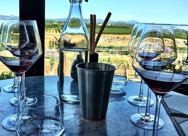 Napa Valley and Sonoma Wine Tasting Etiquette Dump and Spit