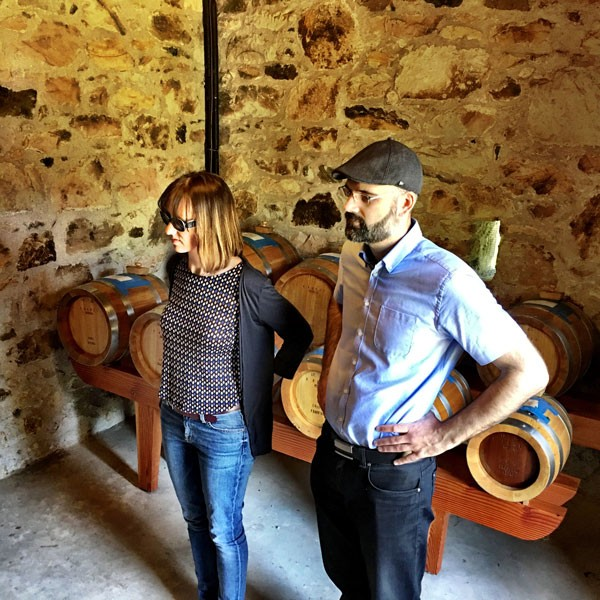 Napa Valley and Sonoma Winery Tours