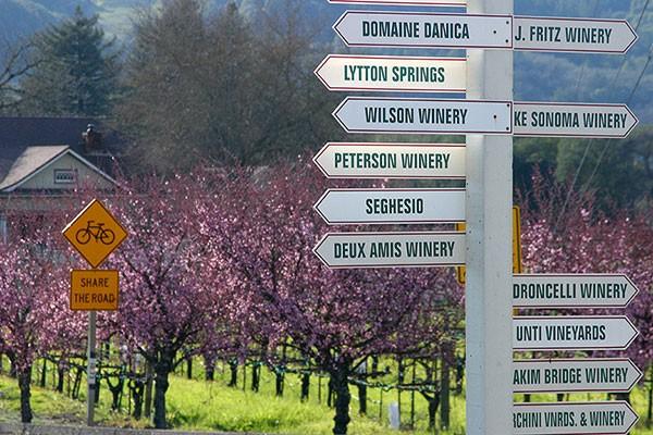 Sonoma wine tours Dry Creek